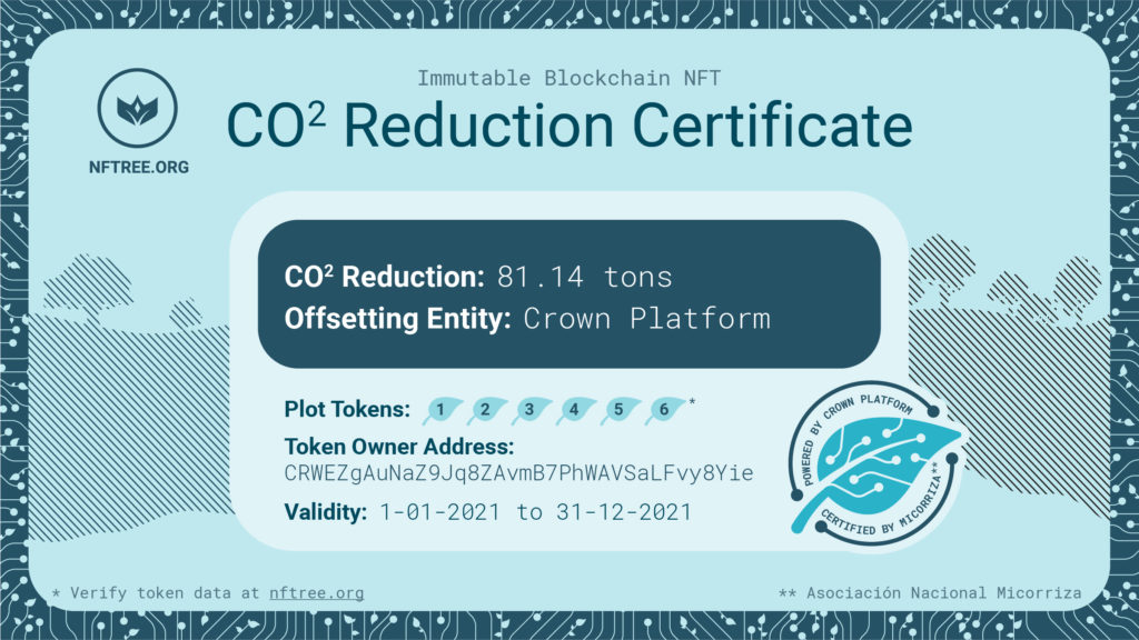 You can download the original certificate to verify the hash and compare it to the token ID.